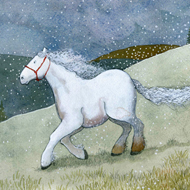 White Horse by Johanna Husband